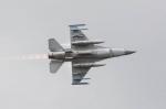 luchtmachtdagen2014-5